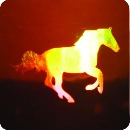 Holograme Cal 1000 bucati