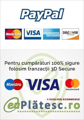 Plati securizate prin protocolul SSL
